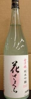hanasakura.JPG