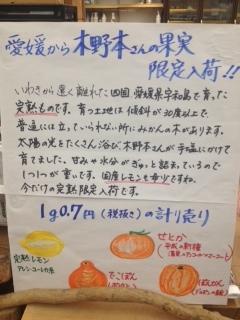 kinomotoseika1.JPG